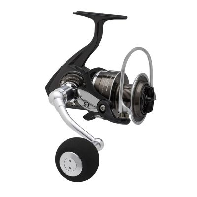 Daiwa Catalina Reel